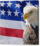 Eagle And Flag Canvas Print