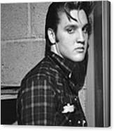 Elvis Presley 1956 Canvas Print