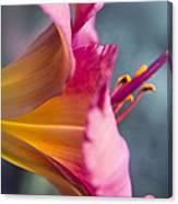 Enchanting Florals Canvas Print