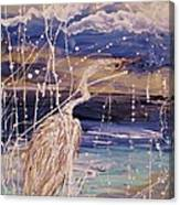 Evenflo Canvas Print
