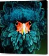 Exotic Birds Canvas Print