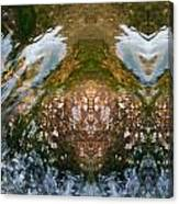 Faces In Water II Canvas Print