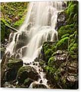 Fairy Falls In The Columbia River Gorge Area Of Oregon Canvas Print