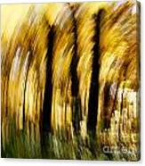 Fall Abstract Canvas Print