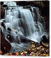 Fall At Ricketts Glen Canvas Print