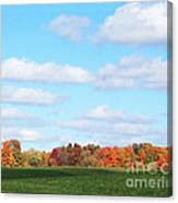 Fall Colors IIi Canvas Print