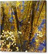 Fall Dreams Canvas Print