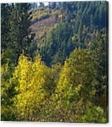 Fall In Spokane Canvas Print