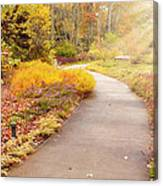 Fall In The Park Canvas Print