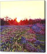 Farley Sunset Canvas Print