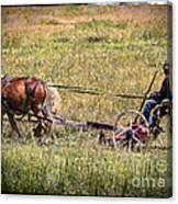 Farming With Horses Canvas Print