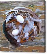 53. Feather Wreath Can Be Ordered Canvas Print