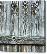 Fence Detail Canvas Print