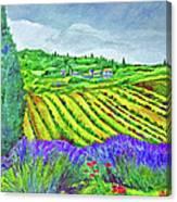 Fields At Dievole Canvas Print