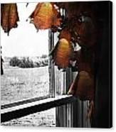 Fire Curtains Canvas Print