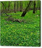 Floral Forest Floor Canvas Print