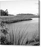 Florida Au Natural Bw Canvas Print