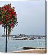 Flowers Along The Seafront Canvas Print