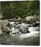 Flowing Stream In Vermont Canvas Print