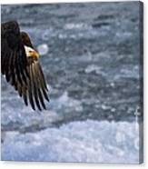 Flying Over Ice Canvas Print