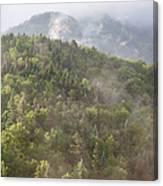 Franconia Notch State Park - White Mountains Nh Usa Canvas Print