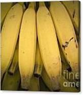 Fresh Bananas On A Street Fair In Brazil. Canvas Print