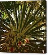 Fresh Cut Palm 2 Canvas Print