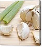 Fresh Garlic And Green Onion Canvas Print