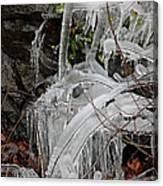 Frozen V Canvas Print