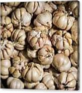 Garlic In A Basket. Canvas Print