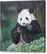 Giant Panda 1 Canvas Print