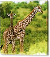 Mom Giraffe And Little Joey Canvas Print