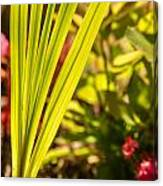 Glowing Iris Leaves 1 Canvas Print