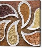 Gluten Free Grain Abstract Canvas Print