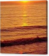Golden - Sunrise Canvas Print