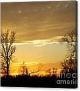 Golden Sunset 61 Canvas Print