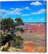 Grand Canyon - South Rim Canvas Print