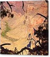 Grand Canyon 34 Canvas Print