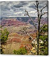 Grand Canyon View From The South Rim Canvas Print