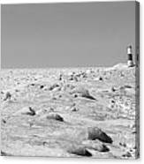 Grand Haven Channel Under Ice Canvas Print