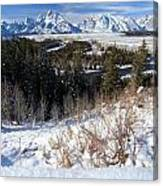 Grand Teton Landscape Canvas Print