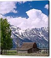 Grand Teton Np Canvas Print