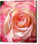 Grandiflora Canvas Print