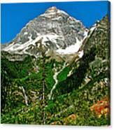 Great Glacier Trail In Glacier Np-british Columbia Canvas Print