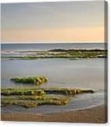 Green Coast Canvas Print