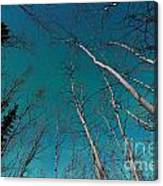 Green Swirls Of Northern Lights Over Boreal Forest Canvas Print