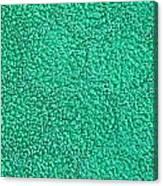 Green Towel Canvas Print