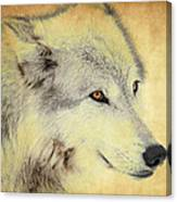 Grey Wolf Art Canvas Print