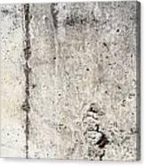Grunge Concrete Texture Canvas Print