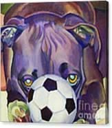 Guard Dog Canvas Print